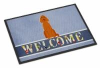 Carolines Treasures  BB5645MAT Irish Setter Welcome Indoor or Outdoor Mat 18x27 - 18Hx27W