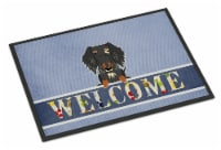 Wire Haired Dachshund Dapple Welcome Indoor or Outdoor Mat 18x27