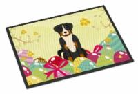 Easter Eggs Appenzeller Sennenhund Indoor or Outdoor Mat 18x27 - 18Hx27W