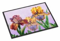 Purple and Yellow Iris Indoor or Outdoor Mat 18x27