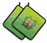 Carolines Treasures  BB7449PTHD Aloha Flip Flops Pair of Pot Holders - Standard