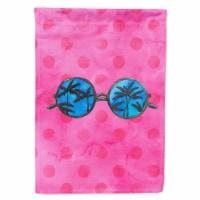 Carolines Treasures  BB8179CHF Sunglasses Pink Polkadot Flag Canvas House Size