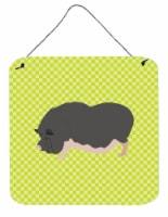 Vietnamese Pot-Bellied Pig Green Wall or Door Hanging Prints - 6HX6W