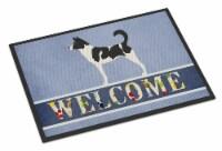 Carolines Treasures  BB8329JMAT Canaan Dog Welcome Indoor or Outdoor Mat 24x36