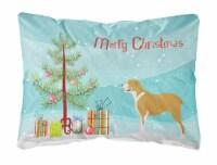 Belgium Mastiff Christmas Canvas Fabric Decorative Pillow
