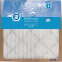 True Blue Basic Protection Air Filter - 1 ct