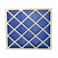 True Blue PRO120202-2DC 20 x 20 x 2 in. Pro Fpr 1 Fiberglass Air Filter, Blue - Pack of 12 - 1