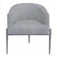Jolie Contemporary Accent Chair in Polished Stainless Steel Finish and Silver Fabric - 1