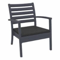 Compamia Artemis XL Club Chair in Dark Gray with Fabric Charcoal Cushions (set of 2) - 2