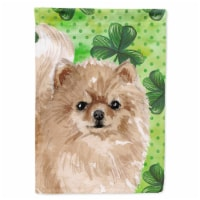 Carolines Treasures  BB9565CHF Pomeranian St. Patrick's Flag Canvas House Size