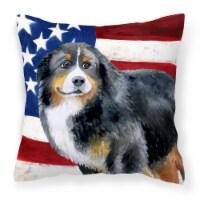 Bernese Mountain Dog Patriotic Fabric Decorative Pillow - 14Hx14W