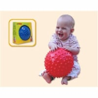 Sensory Ball 6.5 - 1