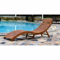 Curved Folding Chaise Lounger - 1