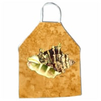 27 x 31 in. Shell Apron