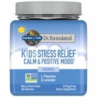 Garden of Life® Dr. Formulated Berry Citrus Flavor Kids Stress Relief Gummies - 60 ct