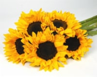 Lemon Sun Bouquet - 5 stems
