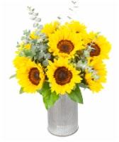 Dos Gringos Flower Company Sending Sunshine Sun Flower Arrangement - 1 ct