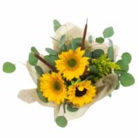 Sunflower Cattail