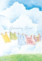 Willow Brook Laundry Line Scented Sachets - 3 pk