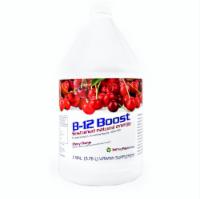 High Performance Fitness, Inc. 1st Step Liquid B-12, Cherry Charge, 1 Gallon - 1 Unit