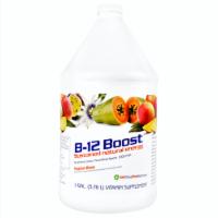 High Performance Fitness, Inc. 1st Step Liquid B-12, Tropical Blast, 1 Gallon - 1 Unit