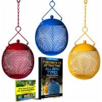 Backyard Expressions Set of 3 Squirrel Proof Bird Feeders - Bonus Ebook and Audio Included