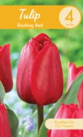Garden State Bulb Blushing Red Tulip Bulbs