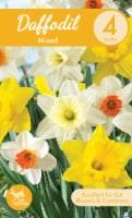 Garden State Bulb Mixed Daffodil Bulbs - 4 pk