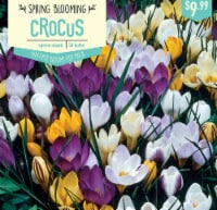 Garden State Bulb Crocus Specie Mixed Bulbs 50 Count