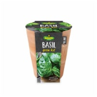 Bonnie Plants Basil Seeds Growing Kit