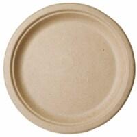 Bridge-Gate 10  Compostable Wheat Straw Plates / 500-ct. Case - 500-ct. Case
