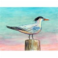 Betsy Drake PM951 Royal Tern Place Mat - Set of 4