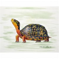 Betsy Drake DM491G Happy Turtle Door Mat, Large - 1