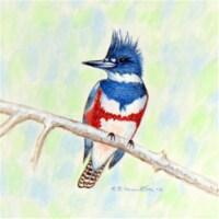 Betsy Drake DM363 Kingfisher Door Mat, Small