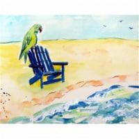 Betsy Drake DM398G Parrot & Chair Door Mat, Large - 1