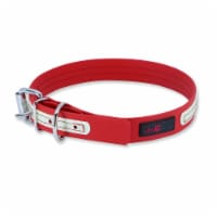 """Collar - Play Glow Buckle, 3/4"""" Wide - Fits neck 14.5"""" to 17.5"""" - Red - Each"""