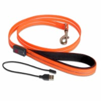 Rechargeable Boss LED Lead - 6 ft. - Orange - Each