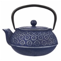 Blue Floral Cast Iron Teapot Kettle with Stainless Steel Infuser 1 Liter