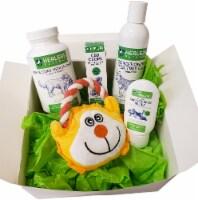Healers Health Packs-  Healthy Skin Anti-Itch Calming Pack - 1/1