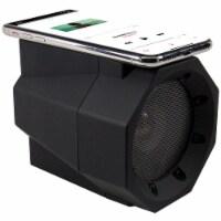Acoustix Wireless Induction Amplified Speaker - Black