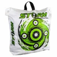 Hurricane H63000 Storm II 20 600 FPS High Contrast Archery Bag Target, White