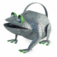 Boston International Frog Watering Can Outdoor Decor - Silver