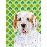 Carolines Treasures  SS4431-FLAG-PARENT Clumber Spaniel St. Patrick's Day Shamro