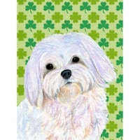 Carolines Treasures  SS4413-FLAG-PARENT Maltese St. Patrick's Day Shamrock Portr
