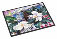 Carolines Treasures  1009MAT Barq's and Magnolia Indoor or Outdoor Mat 18x27 Doo - 18Hx27W