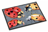 Carolines Treasures  8876MAT Lady Bug Multiple Indoor or Outdoor Mat 18x27 Doorm