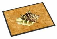 Carolines Treasures  8658-JMAT Shell  Indoor or Outdoor Mat 24x36 8658 Doormat