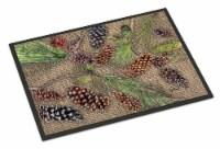 Carolines Treasures  8735JMAT Pine Cones  Indoor or Outdoor Mat 24x36 Doormat