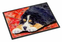 Carolines Treasures  SS8842JMAT Bernese Mountain Dog Indoor or Outdoor Mat 24x36