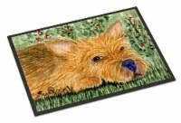 Carolines Treasures  SS8862JMAT Norwich Terrier Indoor or Outdoor Mat 24x36 Door